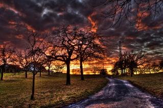 Farben-der-Natur
