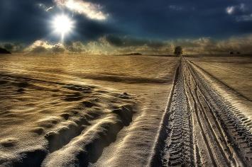 Winter-Wonderland