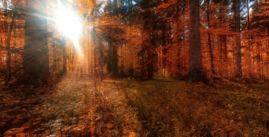...die-letzten-Sonnenstrahlen